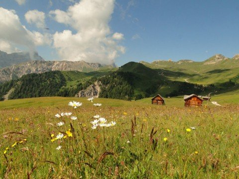 La baita alpina Vaciara nelle Dolomiti – Vacanze in alta montagna