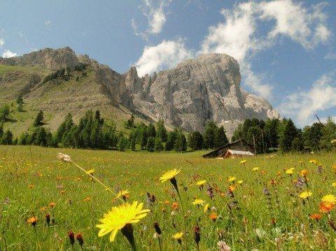 Vacanze piacevoli nella baita alpina Vaciara nelle Dolomiti